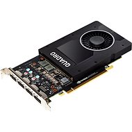 HP NVIDIA Graphics PLUS Quadro P2000 - Graphics Card