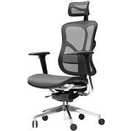 Spinergo Business Grey - Office Chair