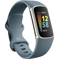 Fitbit Charge 5 Steel Blue/Platinum Stainless-Steel - Fitness Tracker