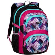 Bagmaster School backpack Theory 20A