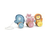 Wooden Push and Pull  - Animals - Push and Pull Toy