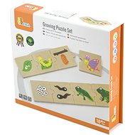 Wooden Puzzle - Evolution - Wooden Toy