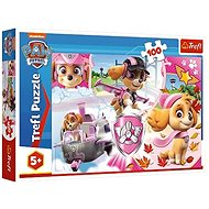 Puzzle Paw Patrol in action - Puzzle