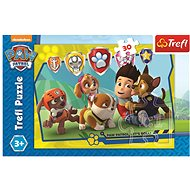 Paw patrol Ryder and friends - Puzzle