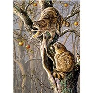 Cobble Hill Puzzle Raccoon on a tree of 1000 pieces - Puzzle