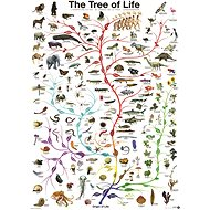 Eurographics Puzzle Tree of Life 1000 pieces - Puzzle