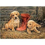 Eurographics Puzzle Puppies with an old shoe of 1000 pieces - Puzzle