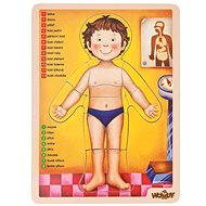 Woody Puzzle - Human body
