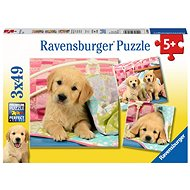 Ravensburger 080656 Beautiful Puppies - Puzzle