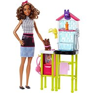 Barbie Careers Dog Carer - Doll Accessory