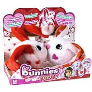 Bunnies Love Rabbits with Magnets - 2pc set