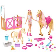 Barbie Groom 'n Care Doll, Horses And Playset - Doll