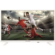 """24"""" STRONG SRT24HZ4003NW - Television"""