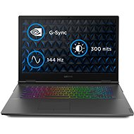 Lenovo Legion Y740-17CH Black - Gaming Laptop