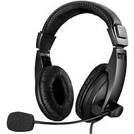Sandberg SAVER Large USB Headset with Microphone, Black - Headphones