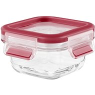Tefal Box 0.2l MASTER SEAL GLASS square glass - Container