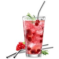 TESCOMA myDRINK Stainless-steel Straws, 4 pcs, with Cleaning Brush - Straw