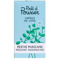 Pret and Pousser Moroccan Mint Pod - Seedling Planter