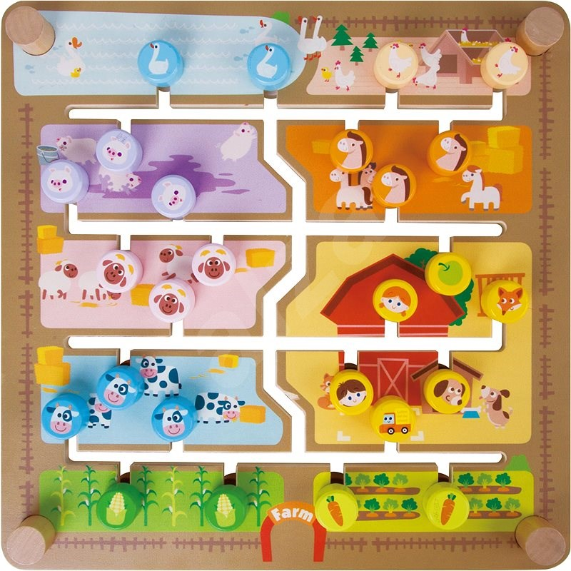 Insertion / educational labyrinth 2in1 - Interactive Toy