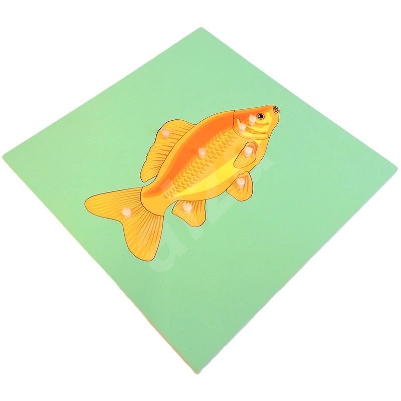 Puzzle with a Skeleton - Fish - Puzzle