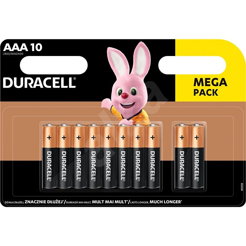 Duracell Basic AAA 10pcs - Disposable Battery